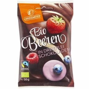 Mix de fructe de padure in ciocolata ECO 50 g, Landgarten